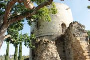 coudray-tower